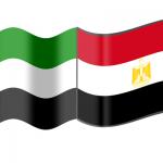 القاهرة تشيد بسرعة إنجاز إجراءات مصري أصيب في حادث