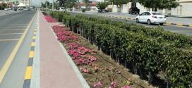 إنشاء حديقة جديدة عند مدخل الفجيرة وأخرى في الطويين و3 ملاعب للشباب في الإمارة