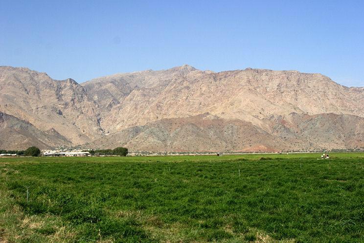 نصف مليون درهم قرضاً دون فائدة لكل مزارع في الفجيرة