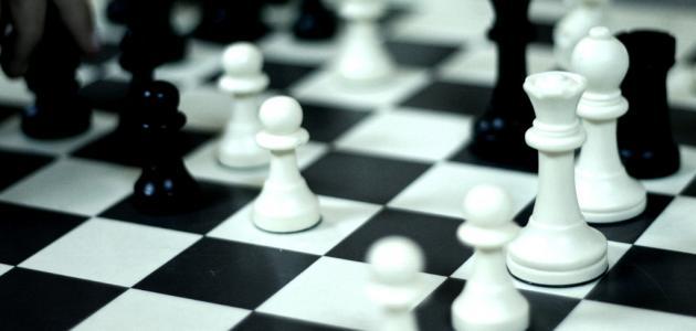 جلسة عصف ذهني في الفجيرة لتطوير الشطرنج